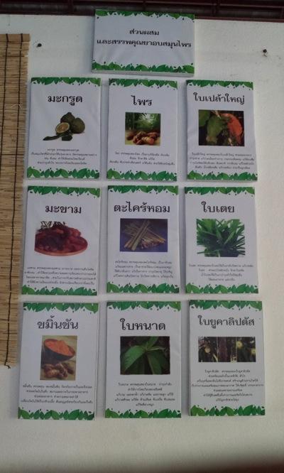 チェンマイの薬草スチームサウナに入っているハーブの効能タイ語