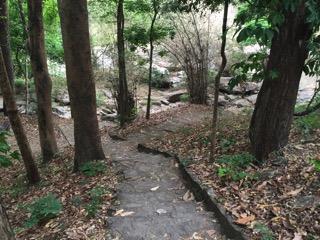 チェンマイのドイインタノン自然公園の遊歩道