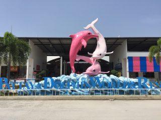 パタヤ観光で幸福ぶピンクイルカに会ってきた
