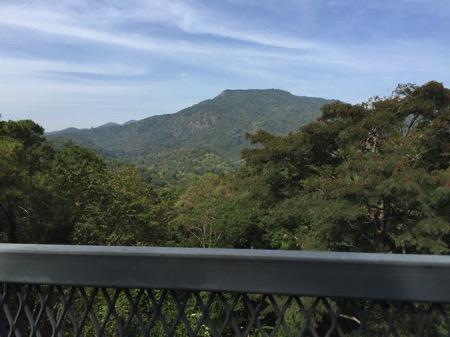 チェンマイにあるタイ最長スカイウォークCanopy Walkwayからみた山
