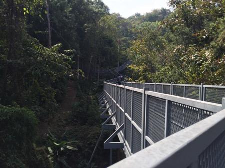 チェンマイにあるタイ最長スカイウォークCanopy Walkway−1