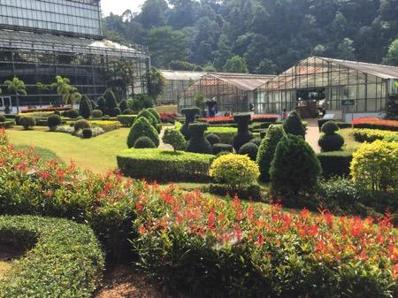 チェンマイにあるクイーンシキリットボタニックガーデンの手入れが行き届いた庭