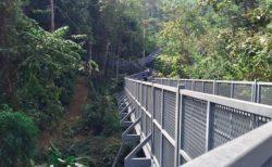 シリキット王妃植物園