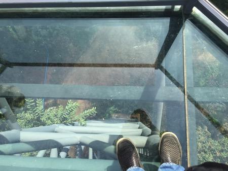 チェンマイにあるタイ最長スカイウォークCanopy Walkwayの強化ガラスで出来ているビューポイント−2