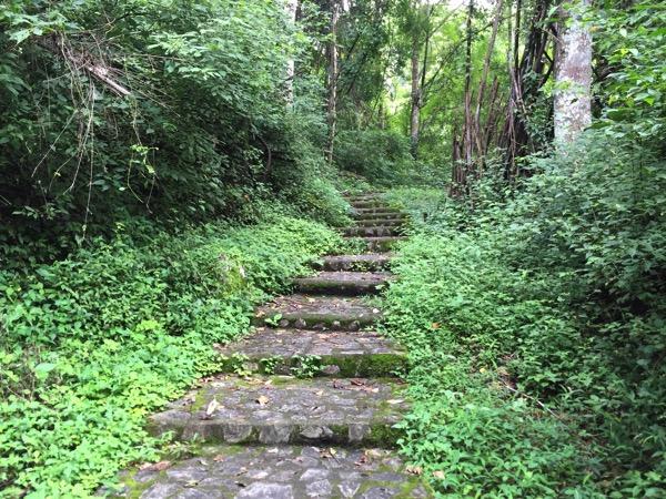 ポーンドゥアット森林公園の遊歩道 6