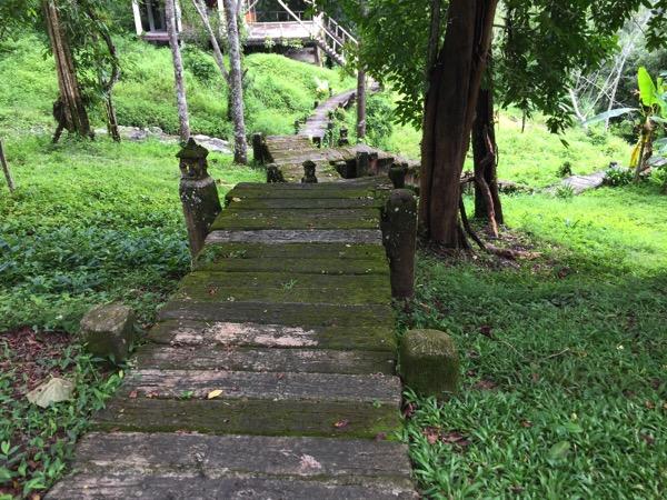 ポーンドゥアット森林公園の遊歩道 11
