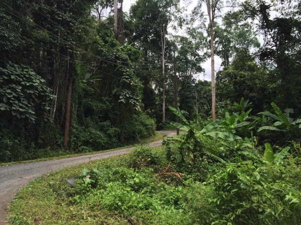 ポーンドゥアット森林公園への行き方 山道