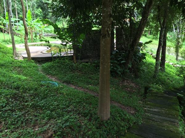 ポーンドゥアット森林公園のプール 1