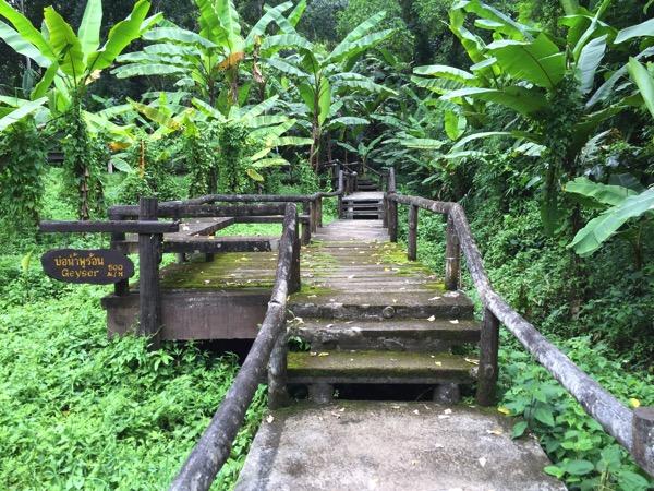 ポーンドゥアット森林公園の遊歩道 3