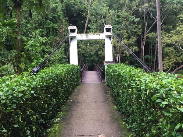 メーホンソンタムプラー国立公園の吊り橋 1