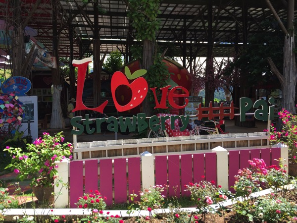 Love Strawberry Paiの看板