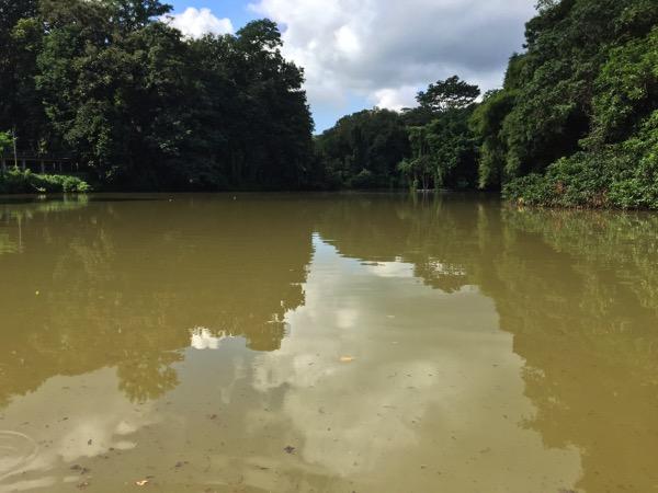 ワットウモーンの池 1
