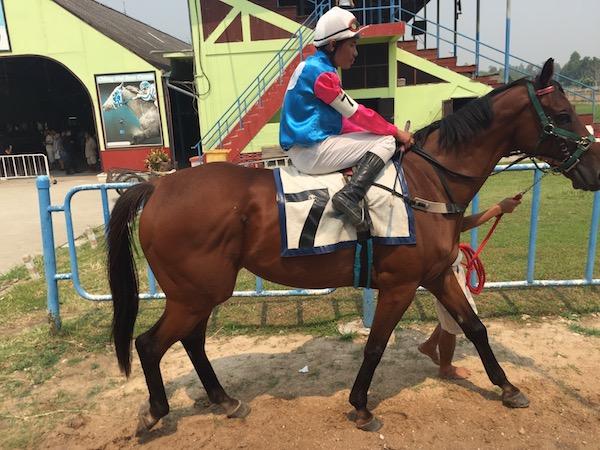 チェンマイで初めての競馬観戦!一風かわったチェンマイ観光スポット