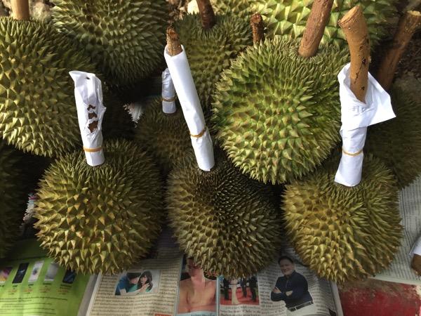 タイのドリアンガーンヤーウの外皮