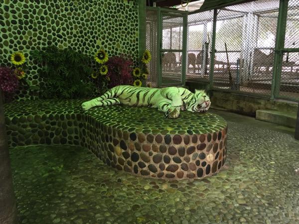 パタヤクロコダイルファームの虎 1
