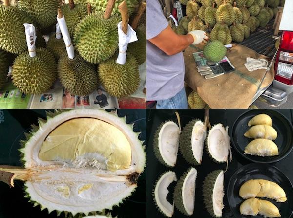 タイでドリアン丸ごと一個買い!美味しいドリアンアイスの作り方