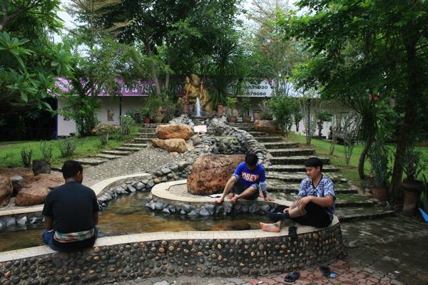 チェンラメーカチャン温泉の足湯 1