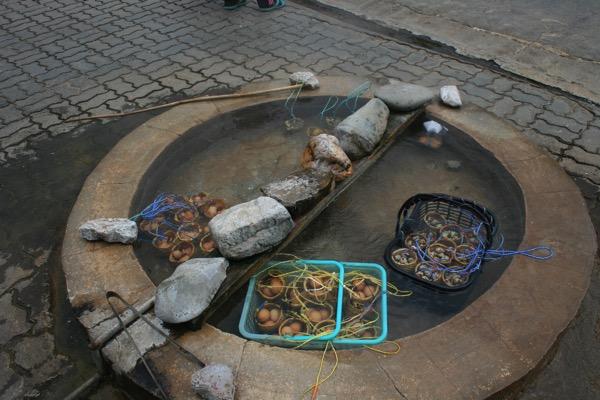 チェンライメーカチャン温泉の温泉卵
