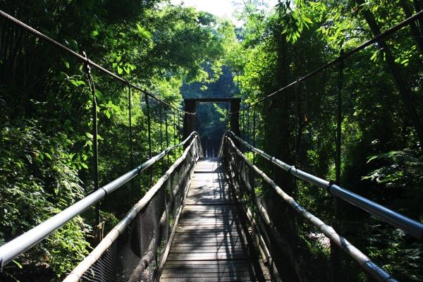 チェンダオの象訓練センターの吊り橋-1