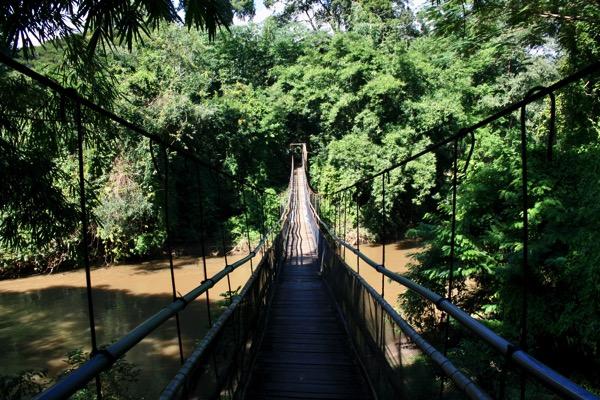 チェンダオの象訓練センターの吊り橋-2