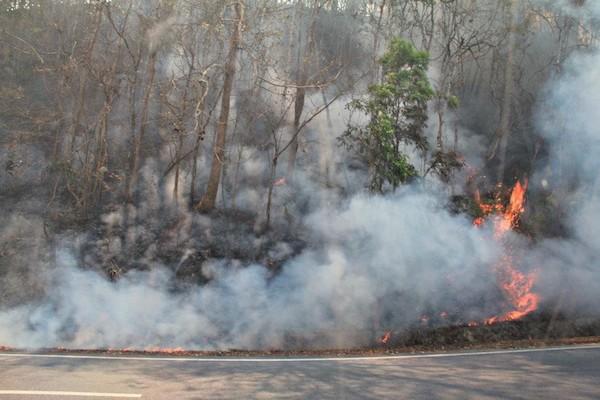 2018年チェンマイの煙害状況は危険水準と専門家が注意喚起!