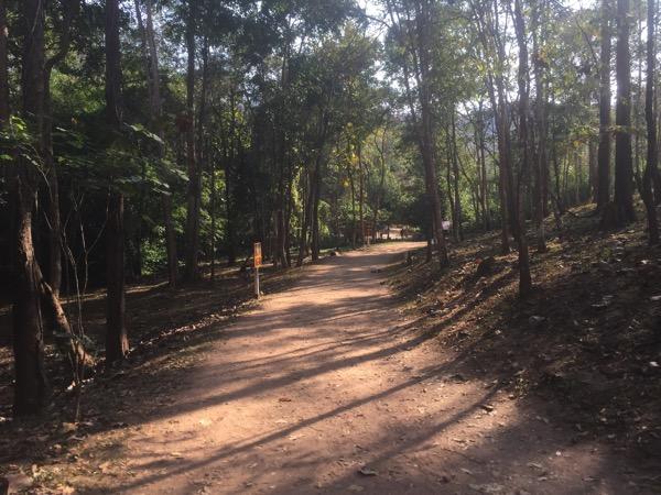 ター・パーイ温泉の未舗装の道