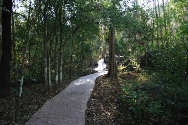 ター・パーイ温泉の森の中を走る遊歩道