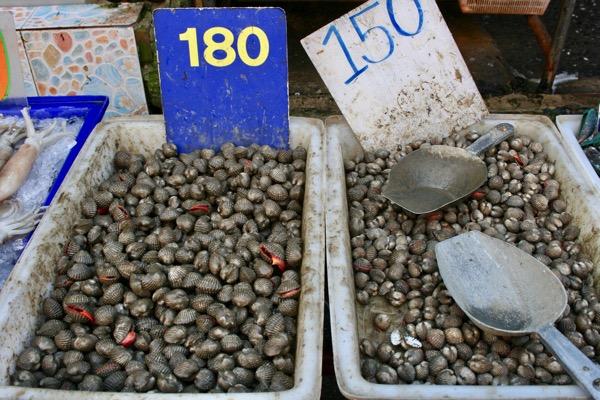 ムアンマイ市場のタイの赤貝