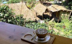 チェンマイのモン族カフェ5選!山岳民族のオーガニックコーヒー
