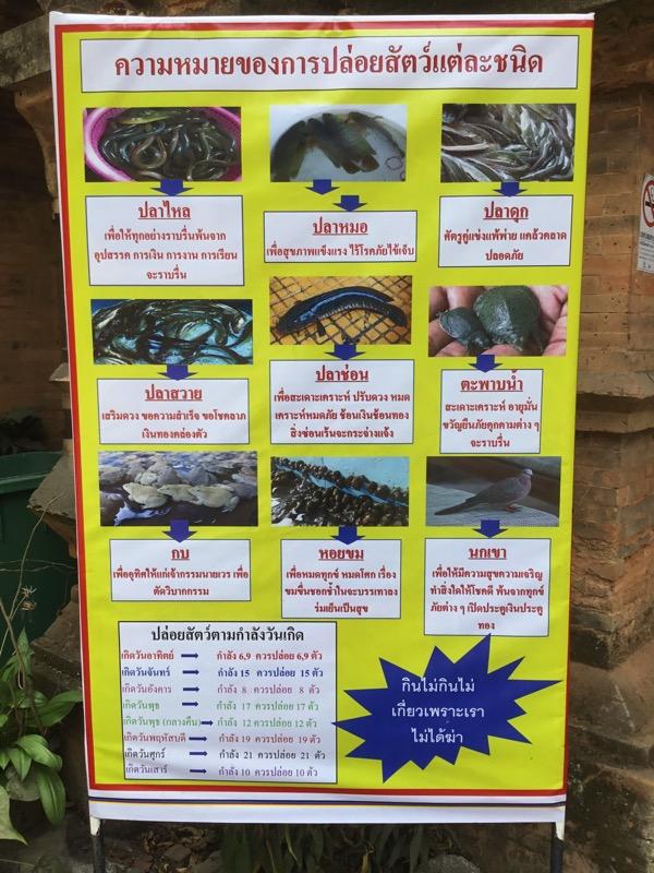 ワットチャイモンコンのタンブンする動物の看板