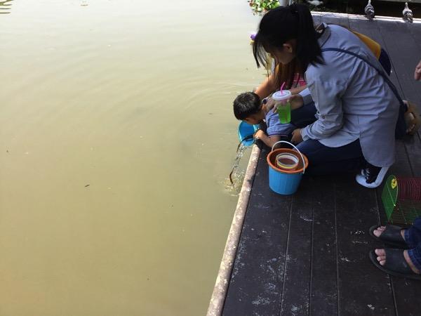 川に放魚する子供