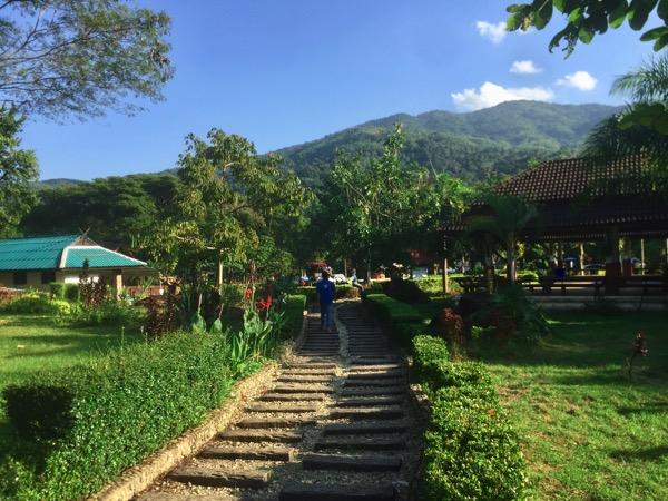 チェンライパートゥン温泉の四方を北タイの山々に囲まれた自然豊かな景色