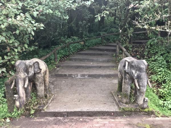 タイ国内最高到達地点の入り口にいる二頭の像
