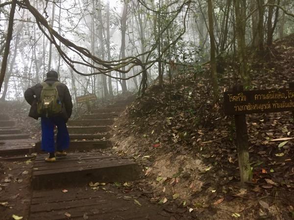ドイ・インタノン国立公園のトレッキングに同行するガイド