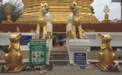 子年の守護寺院
