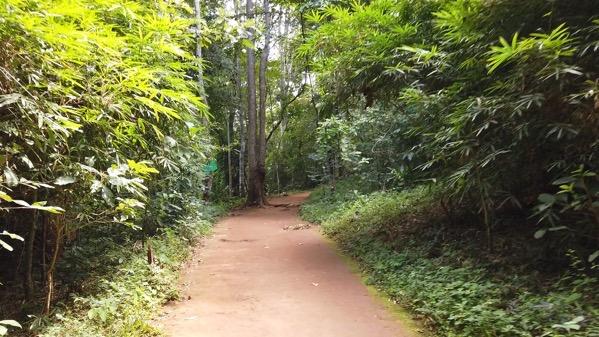 タム・ロート洞窟の園内