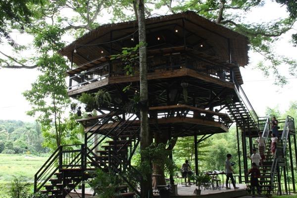 3階建てのツリーハウス