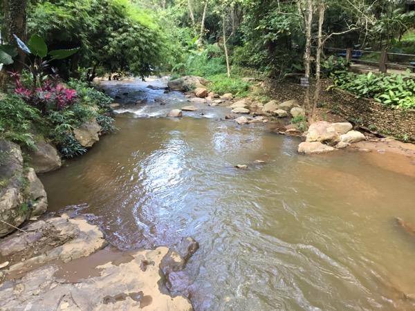 象の水遊び場
