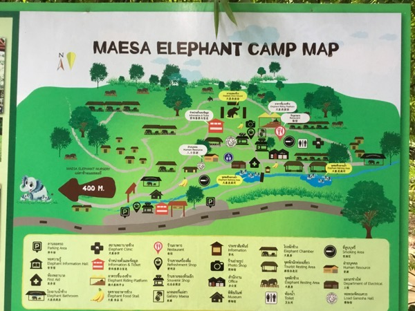 メーサー・エレファント・キャンプの園内MAP