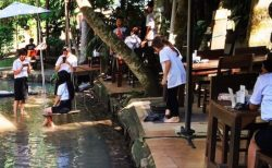 足元に小川が流れるチェンマイのカフェ【バーンスワンカフェ】