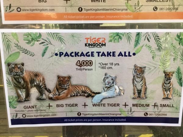 タイガーキングダム:パッケージ料金(虎5頭)