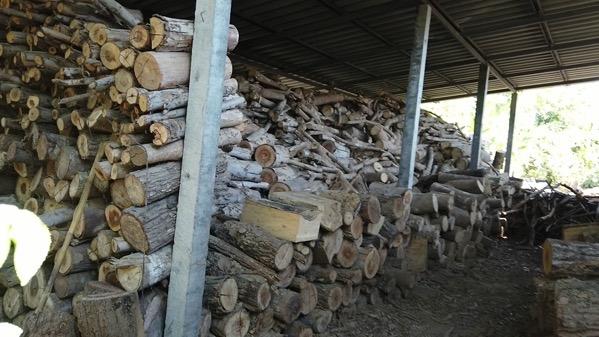 薬草サウナの薪置き場