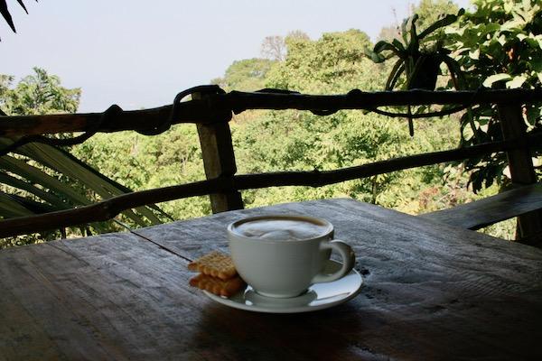 モン族のオーガーニックコーヒー