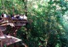 チェンマイの景色を楽しみながらまったり!プーフィンドーイカフェ