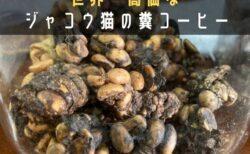 チェンマイで世界一高価なコーヒー「コピ・ルアク」を堪能