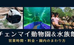 コロナ禍のチェンマイ動物園とチェンマイ水族館|入園料半額キャンペーン中